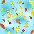 Vector seamless autumn texture with leaves and wheat spikes on blue background