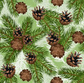 Vector seamless background with fir and cones Stock Photo