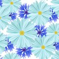 Seamless background pattern with light blue daisies chamomile and cornflowers flowers. Vector illustration.