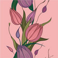 Vector seamless background with pink flowers Royalty Free Stock Image