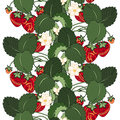 Vector Seamless Colored Fruit Pattern