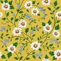 Vector seamless daisy pattern Stock Photo