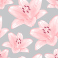 Vector seamless floral background gray with pink lilies Royalty Free Stock Image