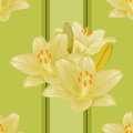 Vector seamless floral background green with lilies Royalty Free Stock Photos