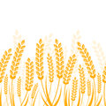Vector seamless horizontal background with golden ripe ear of wh Royalty Free Stock Photo