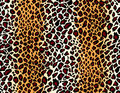 Vector. Seamless jaguar skin pattern Stock Images