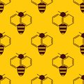 Vector seamless pattern of bee logo on honey background Royalty Free Stock Photo