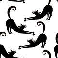 Vector seamless pattern with black cats, kitties on the transparent background.