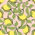 Vector seamless pattern with branches and lemons. Hand drawing. Decorative background