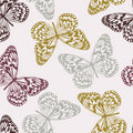 Vector Seamless Pattern with Butterflies Stock Photos
