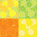Vector seamless pattern of citrus fruits Royalty Free Stock Photos