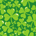 Vector seamless pattern with clover leaf Royalty Free Stock Photography