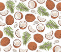 Vector seamless pattern with coconuts and tropical leaves.