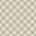 Vector seamless pattern of european ornamental style
