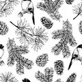 Vector seamless pattern of fir and pine branches, cones and bullfinch bird. Hand drawn elements. Christmas decoration.