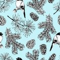 Vector seamless pattern of fir and pine branches, cones and bullfinch bird. Hand drawn elements. Christmas decoration