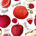 Vector seamless pattern with fruits. apple and razz and pomegranate and grapefruit background. Hand drawn elements.
