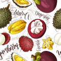 Vector seamless pattern with fruits. Durian and carambola and yumberry and mangosteen background. Hand drawn elements.