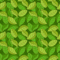 Vector seamless pattern with green leaves Stock Image