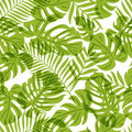 Vector seamless pattern with green palm tree leaves. Summer tropical background.
