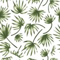 Vector seamless pattern of green palm tree leaves on white background Royalty Free Stock Photo