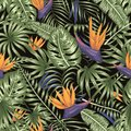 Vector seamless pattern of green tropical leaves with purple strelitzia flowers on black background