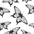Vector seamless pattern of hand drawn black and white butterflies