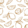 Vector seamless pattern with hand drawn lemons branch, lemon blossom, citrus slices and leaves