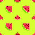 Vector seamless pattern with hand drawn watermelon on a green