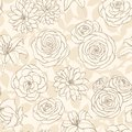 Vector seamless pattern with lily, chrysanthemum, camellia, peony and rose flowers line art on the beige background.