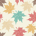 Vector Seamless Pattern of Maple Leaves Stock Photography