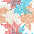 Vector Seamless Pattern of Maple Leaves Stock Images