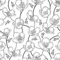 Vector seamless pattern with outline Jasmine flowers in black on the white background. Elegance floral background with jasmin.