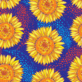 Vector seamless pattern with outline open Sunflower or Helianthus flower in yellow and orange on the blue background. Royalty Free Stock Photo