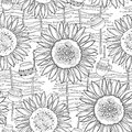 Vector seamless pattern with outline open Sunflower, wicker fence and jug on the white background. Floral summer pattern.