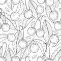 Vector seamless pattern with outline ripe Cherry, berry and leaves in black on the white background. Floral pattern with cherry. Royalty Free Stock Photo