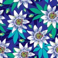 Vector seamless pattern with outline tropical Passiflora or Passion flowers in blue and white, bud and leaves on the blue.