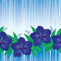 Vector seamless pattern with outline Vanda orchid flower in blue and green leaves on the striped background. Floral pattern.