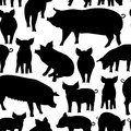 Vector seamless pattern with pig on white background.