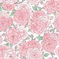 Vector seamless pattern with pink rose flowers and leaves on white background. Vintage floral ornament of blossoms