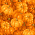 Vector seamless pattern with pumpkins. Stock Photo