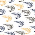 Vector seamless pattern of seafood. Colored shrimps. Hand drawn engraved icons.