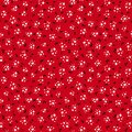Vector seamless pattern with small pretty white flowers on red. Ditsy texture Royalty Free Stock Photo