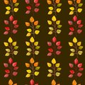 Vector seamless pattern,texture,print with fall leaves on the isolated dark colored background. Autumn colors.