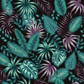 Vector seamless pattern of tropic green and purple foliage on black background. Summer or spring repeat vintage tropical backdrop