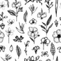Vector seamless pattern of tropical flowers isolated on white background