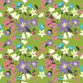 Vector seamless pattern with wild flowers