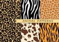 Vector seamless patterns set with animal skin texture. Repeating Royalty Free Stock Photo