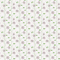 Vector seamless soft color floral roses pattern background Royalty Free Stock Image