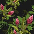 Vector seamless tropical pattern, vivid tropic foliage, with ficus elastic and palm leaves, red protea flower in bloom.